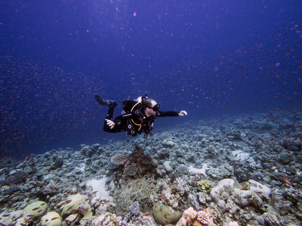 red-sea-dive-center-aqaba-jordan